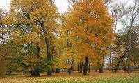 zlota_polska_jesien_31.JPG